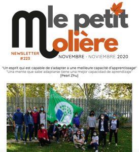 newsletter-noviembre-20